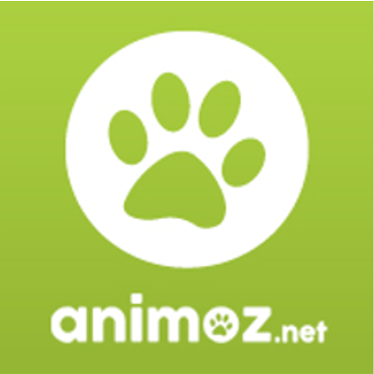 Annonces Chats A Donner Sur Animoz Net